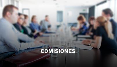 concejo-municipal4