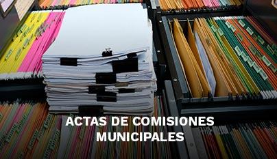 concejo-municipal5