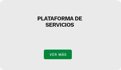 serviciosDestacadosH1