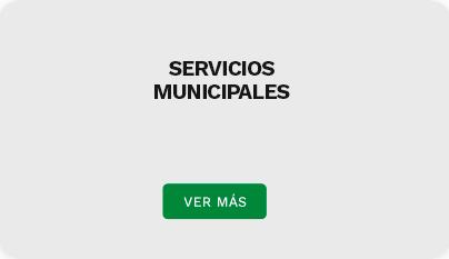 serviciosDestacadosH3